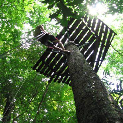 TreeTops Canopy Tour
