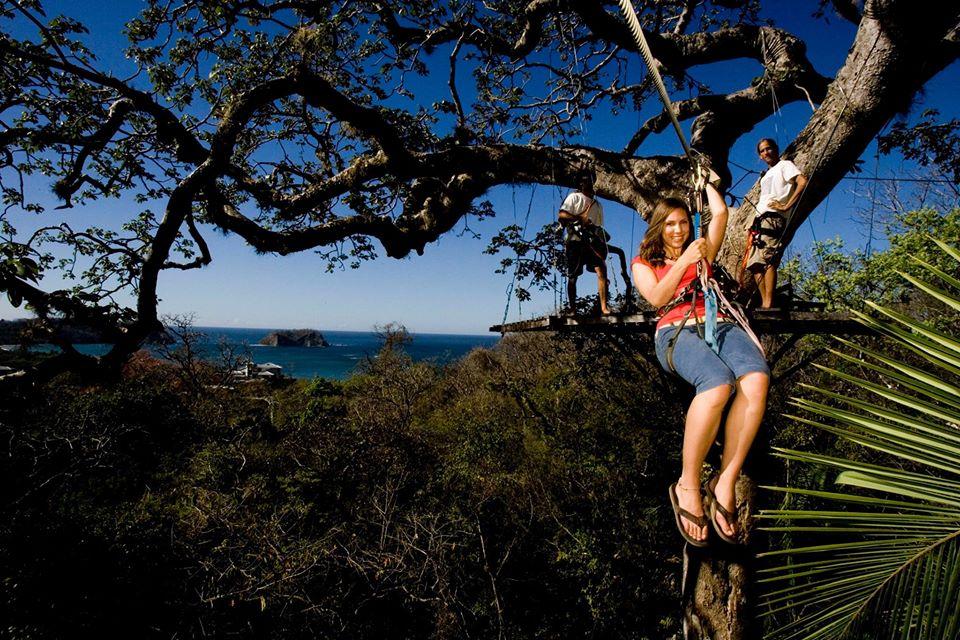Samara Wing Nuts Canopy Tour